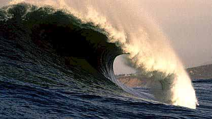 Mavericks  - Photo copyright Doug Acton